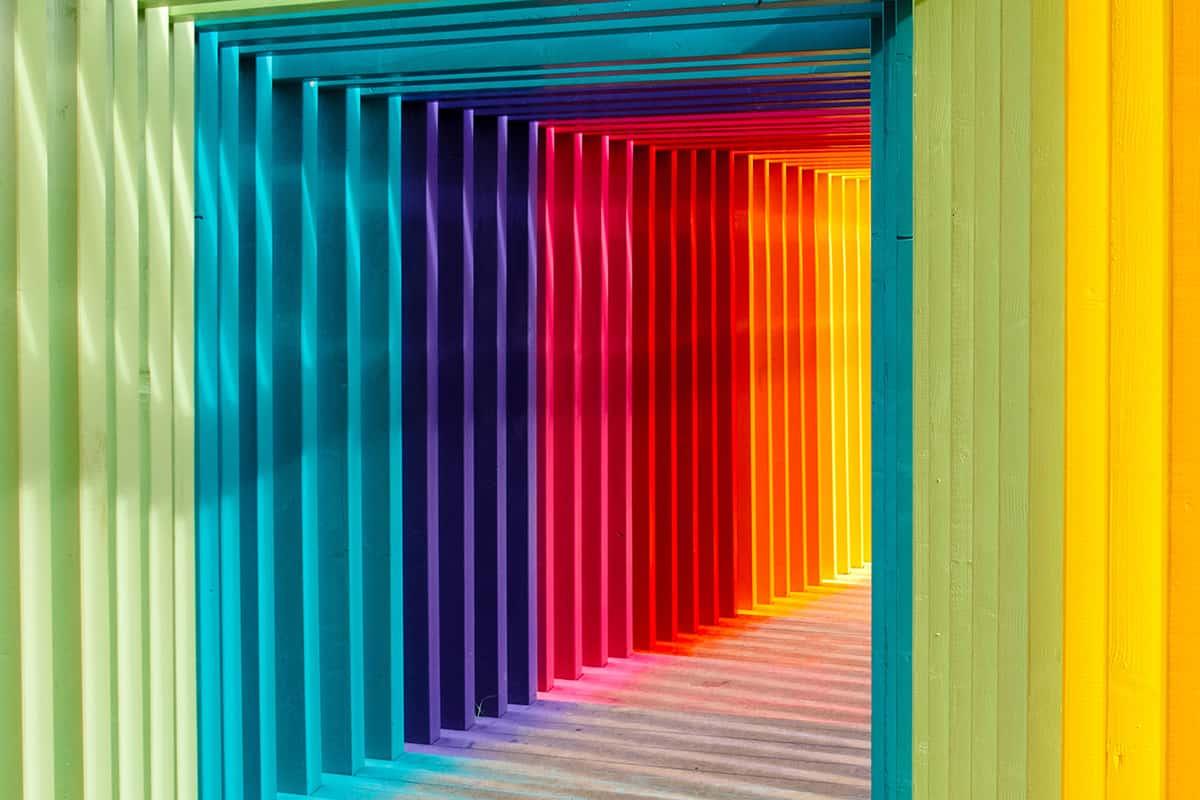 02 Making Of Light Parliamo Di Colore