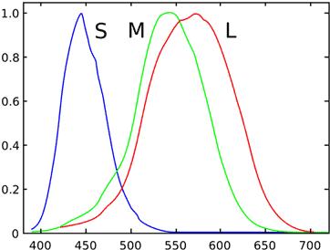 05 Making Of Light Luce, Colore E Visione Le Basi E Le Giuste Parole Curve Di Risposta Del Cono Umano Semplificate. Stockman, Macleod & Johnson (1993)