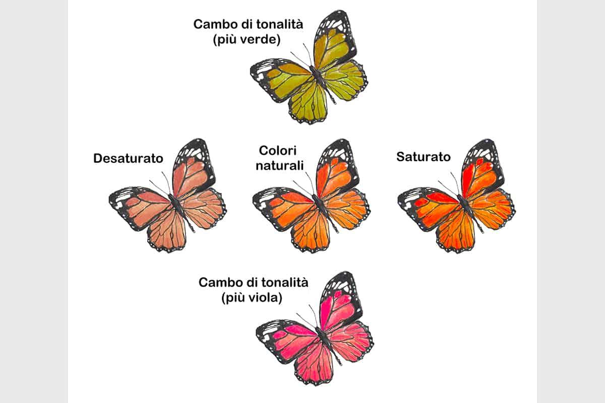 02 Making Of Light Complesso Non Vuol Dire Difficile Farfalle Saturate O Desaturate